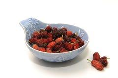 Het fruit van de moerbeiboom Stock Afbeelding