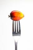 Het fruit van de oliepalm op vork Royalty-vrije Stock Foto