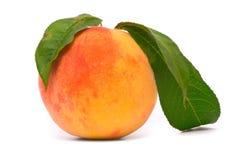 Het fruit van de perzik met groen doorbladert Royalty-vrije Stock Foto