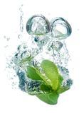 Het Fruit van de ster in water Stock Afbeelding