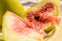 Het fruit van de vijgeboom Stock Foto's