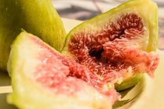 Het fruit van de vijgeboom Royalty-vrije Stock Foto