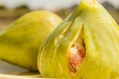 Het fruit van de vijgeboom Royalty-vrije Stock Fotografie