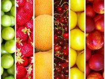 Het fruit van de zomer Stock Foto's