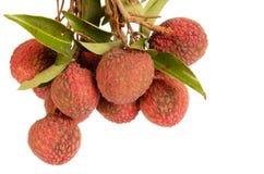 Het Fruit van het litchi Stock Foto