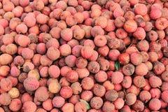 Het fruit van het litchi Royalty-vrije Stock Afbeeldingen