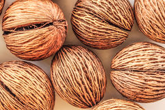 Het fruit van Morrito Stock Foto's