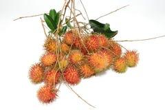 Het fruit van Rambutan Stock Afbeeldingen