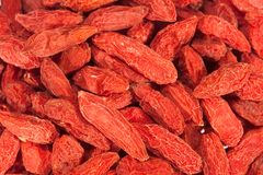 Het fruit van Wolfberry Stock Foto