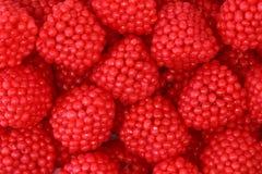Het fruitgelei van frambozen Stock Foto