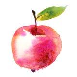 Het fruitillustratie van de Watercolourappel Stock Afbeeldingen