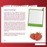 Het fruitmalplaatje van het Web Royalty-vrije Stock Foto
