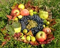 Het fruitmand van de herfst Stock Afbeelding