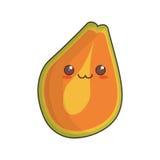 het fruitpictogram van de kawaiipapaja vector illustratie