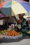 Het Fruitverkoper van Srilankan Royalty-vrije Stock Afbeelding