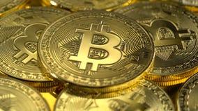 Het fysieke gouden bitcoinmuntstuk roteert langzaam Lage diepte van gebied stock video
