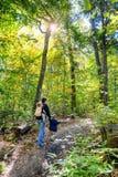 Het gaan voor een Stijging in Autumn Forest Royalty-vrije Stock Afbeeldingen