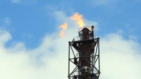 Het gastoorts van de raffinaderijbrand stock footage