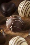 Het gastronomische Buitensporige Donkere Suikergoed van de Chocoladetruffel Royalty-vrije Stock Afbeelding