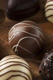 Het gastronomische Buitensporige Donkere Suikergoed van de Chocoladetruffel Stock Afbeelding