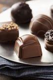 Het gastronomische Buitensporige Donkere Suikergoed van de Chocoladetruffel Royalty-vrije Stock Foto