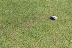 Het Gat van het golf op Groen Gras Stock Afbeeldingen