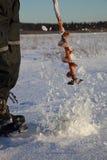 Het gat van het ijs Stock Fotografie