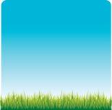 Het gazon van het gras Royalty-vrije Illustratie