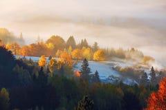 Het gazon wordt ge?nformeerd door de zonstralen De majestueuze herfst landelijk landschap Fantastisch landschap met ochtendmist D stock foto