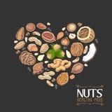 Het geïsoleerde hart van noten en zaden royalty-vrije illustratie