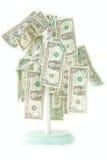 Het geïsoleerdea Groeien van het Geld op Boom Royalty-vrije Stock Foto