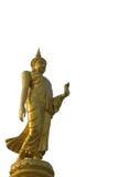 Het geïsoleerdeu gouden standbeeld van Boedha Stock Foto's
