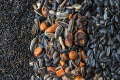 Het geassorteerde zaad, noten en dreied fruit Stock Foto's