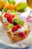 Het gebakje van vruchten stock foto