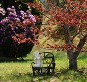 Het Gebed van de lente royalty-vrije stock foto
