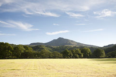 Het gebied en de hemel van de zomer Royalty-vrije Stock Afbeelding