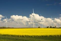 Het gebied en de windturbines van het raapzaad stock fotografie