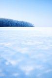 Het gebied en het bos van de winter stock afbeelding