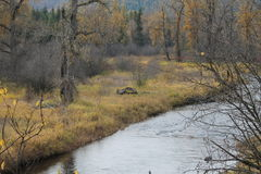 Het gebied tussen twee rivieren komt samen Royalty-vrije Stock Fotografie