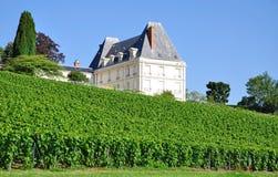 Het Gebied van Champagne dichtbij Epernay, Frankrijk Stock Afbeelding