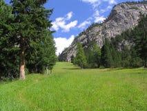 Het gebied van de berg Royalty-vrije Stock Foto