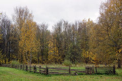 Het gebied van de herfst Stock Afbeeldingen