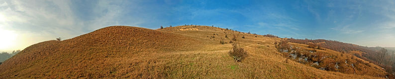 Het gebied van de landbouw Stock Afbeeldingen