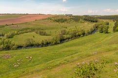 Het gebied van het de lentelandschap dichtbij Dnipro-stad in de centrale Oekraïne Royalty-vrije Stock Afbeeldingen