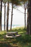 Het Gebied van de picknick, het Vooruitzicht van de Kaap stock foto