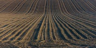 Het gebied van de ploeglandbouw royalty-vrije stock foto's