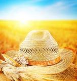 Het gebied van de tarwe en de hoed van een landbouwer royalty-vrije stock foto's