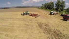 Het gebied van de tarwe Het Seizoen van de tarweoogst stock video