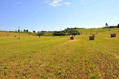 Het gebied van de tarwe in Toscanië, Italië Royalty-vrije Stock Fotografie