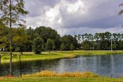 Het gebied van de vijver met regendalingen royalty-vrije stock foto